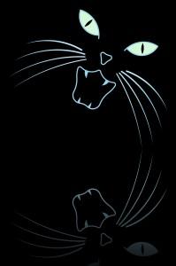 screamingcat-dreamstime