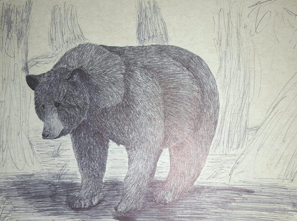 a bear. It's a bear.