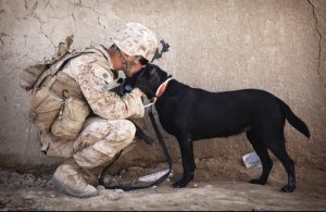 soldier hugging his dog