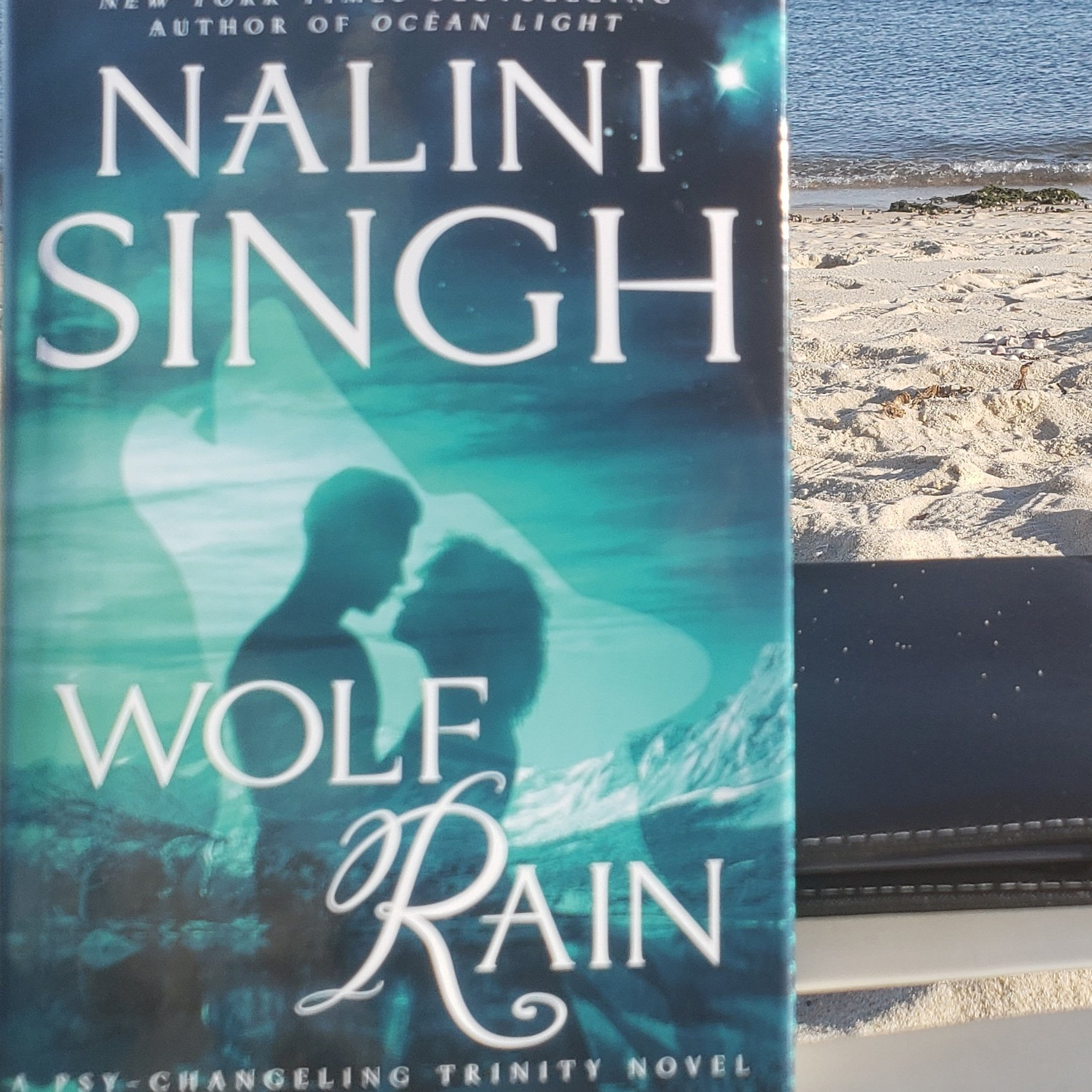 Picture of Nalini Singh's Wolf Rain with the beach in the background