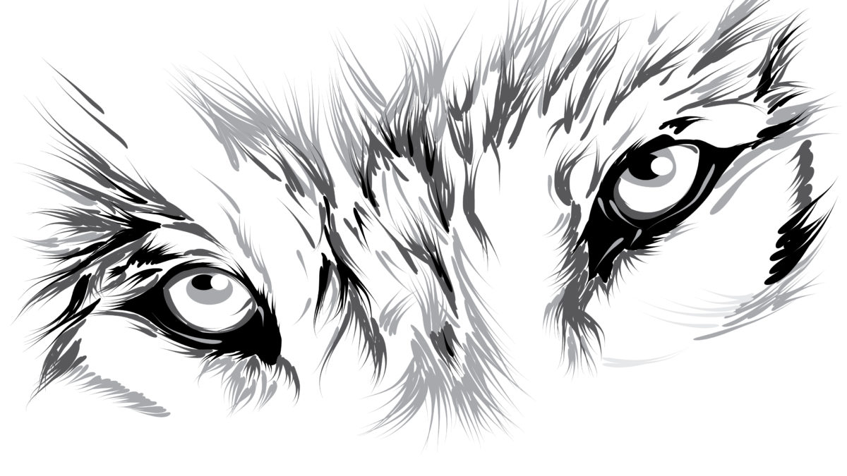 Stylized image of a wolf's eyes Paranormal Romance